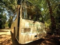 Автобус на пляж